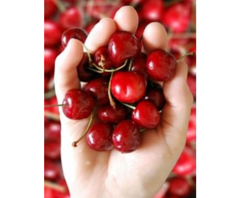 DIY EASY FACE MASK WITH CHERRIES FOR ANTI-AGING